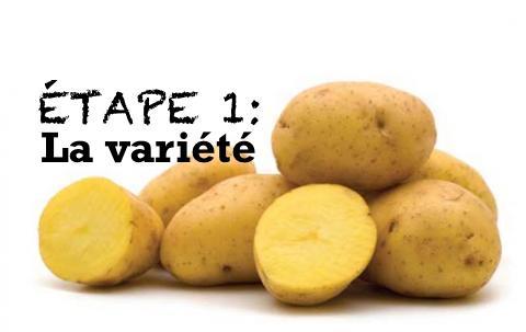 ETAPE1