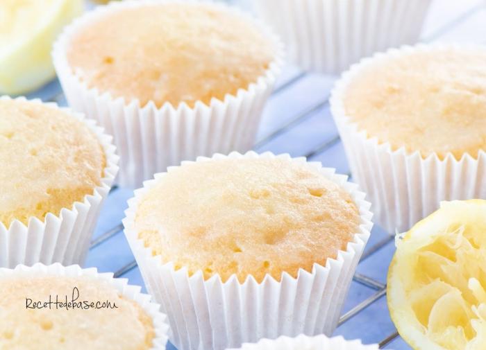 muffin_citron_TITRE1